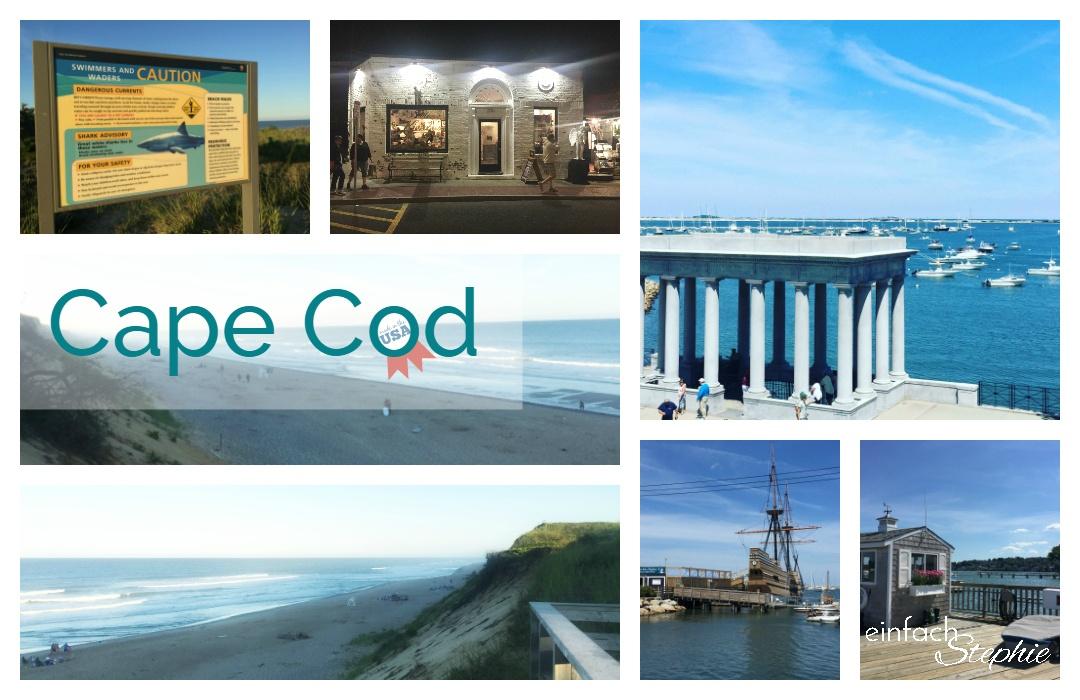 Cape Cod. Wellfleet, Ostküste USA