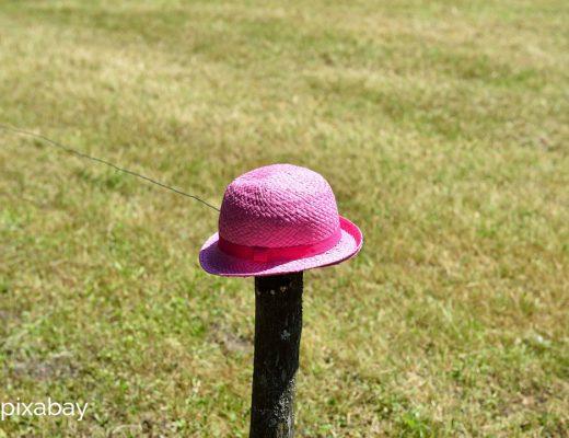 Das große Los. Hut auf Zaun