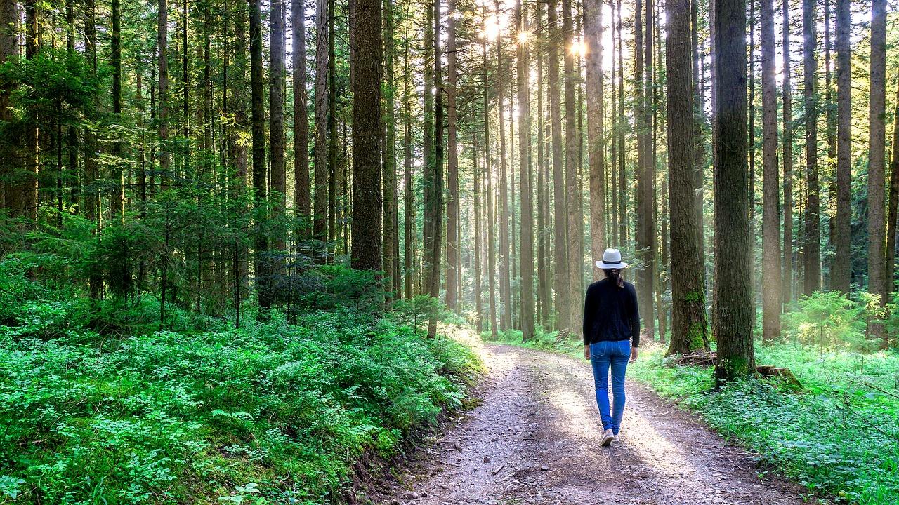 Lass es dir gut gehen. Selbstliebe lernen. Spaziergang
