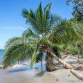 """Reiseblog Travellers Insight. Geheimtipps von Julia Lassner """"Globusliebe"""" Costa Rica, Cahuita"""