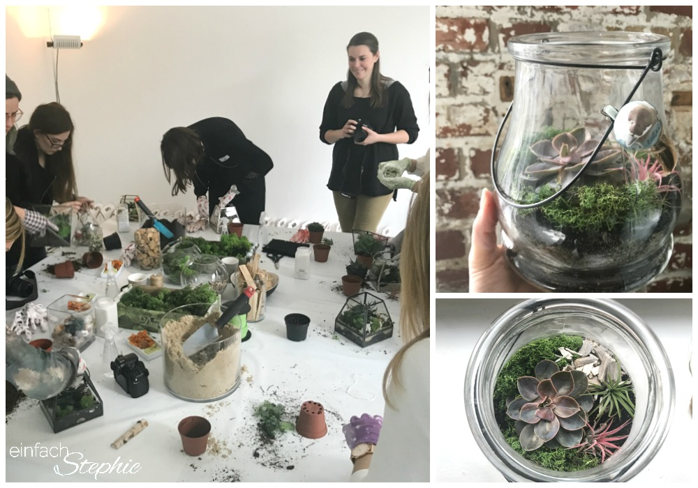 Wohnzimmerkonzert Mit Max Giesinger Und Orthomol Mini Gardening