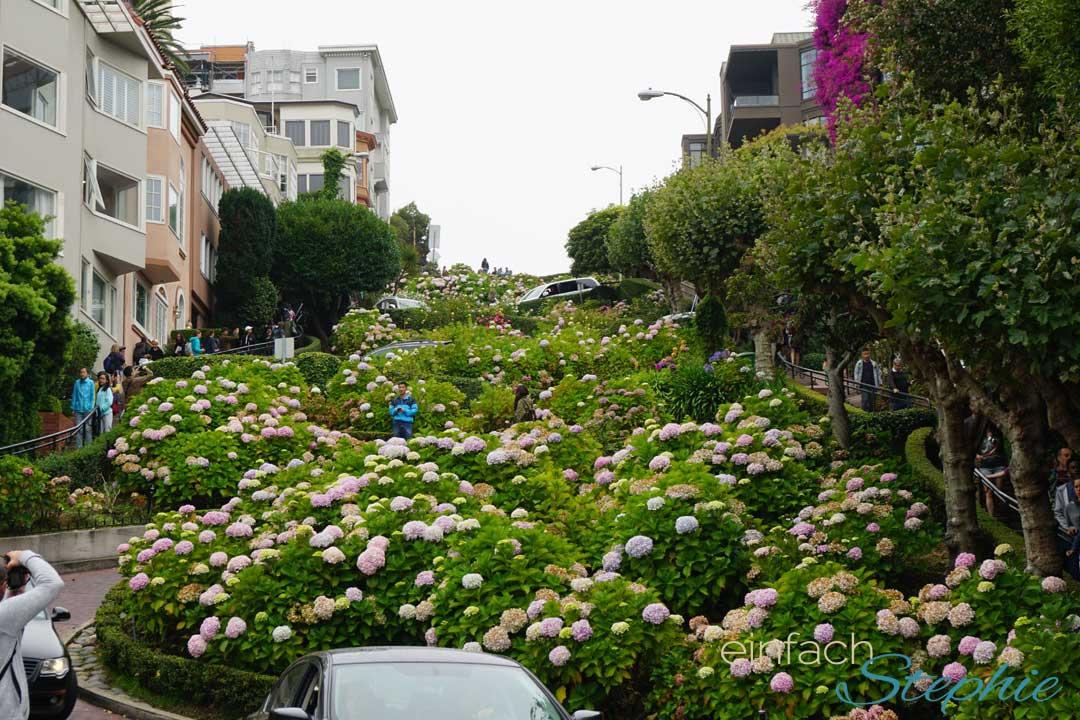 San Francisco mit Teenagern. Lombard Street von unten