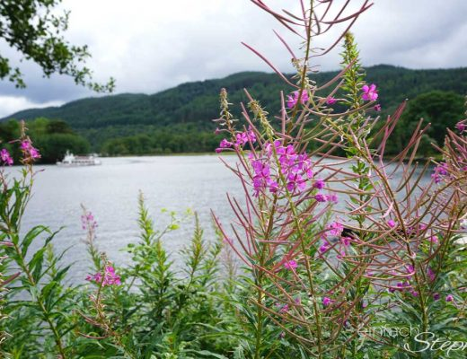 Rundreise Schottland mit Kindern. Loch Lomond in den Highlands