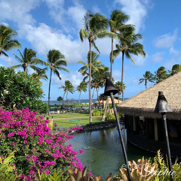 Wunderschöne Vegetation auf Kauai, Hawaii