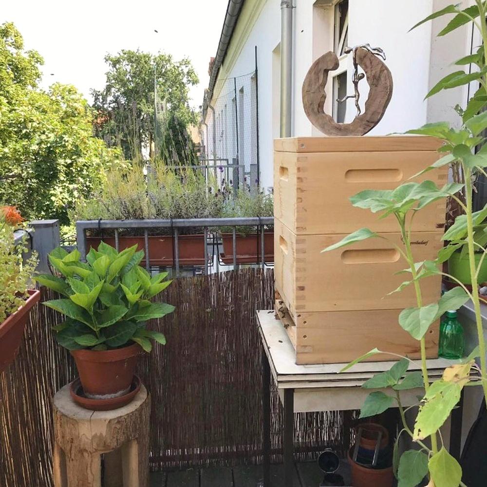 eigener Bienenstock auf einem Balkon in Berlin