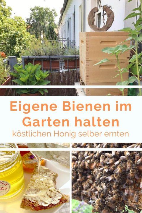 Hobby Imkern. Eigene Bienen im Garten halten. Erfahrungen, Tipps bei einfachstephie.de